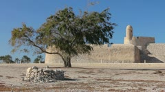 Stock Video Footage of lonely tree of Qal'at al-Bahrain fort