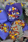 dried bouquets - stock photo