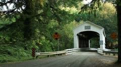 Wild Cat Bridge Oregon Stock Footage
