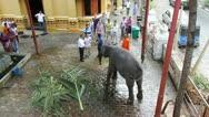 SRI LANKA - MARCH 2012: people praying in temple Stock Footage