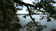 Beauty shot, garry oaks and waterfront pan Stock Footage