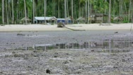 Low tide Stock Footage