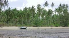low tide - stock footage