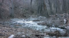 fresh water stream - stock footage