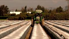 Farm tractor preping field farming hot sunny day farming vegetables growing Stock Footage