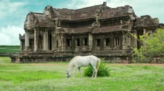 Stock Video Footage of Horse in Angkor Wat, advanced retouched, sky replacement, color enhancement