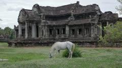 Stock Video Footage of Horse rental in Angkor Wat