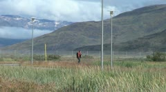 Greenland Narsarsuaq vegetation hiker Stock Footage