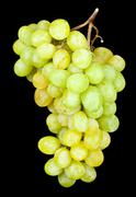 Stock Photo of grapes
