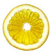 slice of an orange on a white background. - stock photo