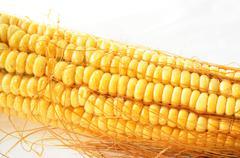 macro view of corn cob - stock photo