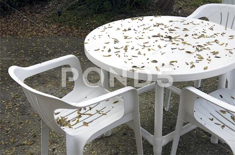 Stock photo of fall table