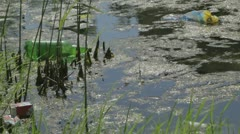 Water pollution. Stock Footage