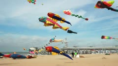 Kite Festival Stock Footage