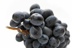 cluster of grapes - stock photo