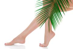 Woman legs and green palm bough Stock Photos