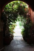 Arch with plants Stock Photos