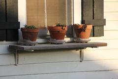 Potted plants on window sill - stock photo