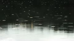Morning Rain Shower on Silent Lake Stock Footage
