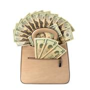 Glamour handbag full with money Stock Photos