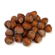 Stock Photo of hazelnuts isolated on white background