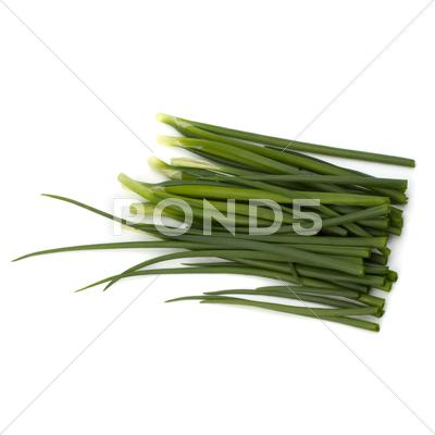 Stock photo of spring onion