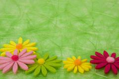 Spring background. flowers on green sisal background. Stock Photos
