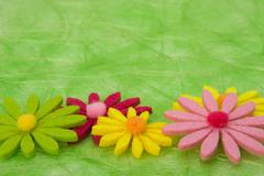 spring background. flowers on green sisal background. - stock photo