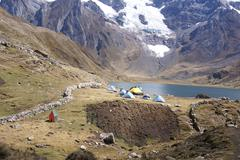 trekking camp with pack mules and donkeys - stock photo