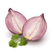 red sliced onion and fresh parsley still life - stock photo