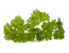 parsley herb - stock photo