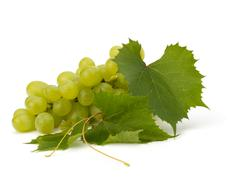 ripe grape whith leaf - stock photo