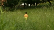 Boy walking outdoor in a forest Stock Footage