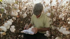 Cotton Crop Quality Control Stock Footage