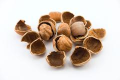 hazelnuts and walnuts isolated on white - stock photo