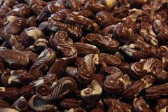 chocolate seahorses - stock photo
