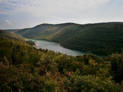River Winding through Green Forest in Istria, Croatia Stock Photos