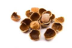 hazelnuts isolated on white - stock photo
