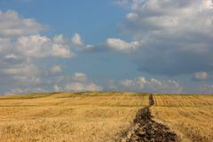 Rural landscape in the country Stock Photos