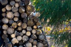 Mountain firewood Stock Photos