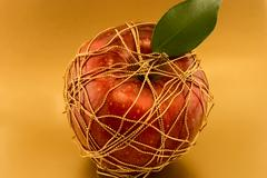 Stock Photo of red apple on a gold background