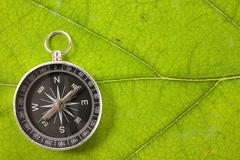 compass on the leaf texture - stock photo
