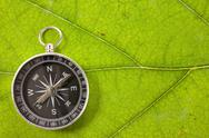 Stock Photo of compass on the leaf texture