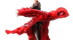 Elegant flamenco Stock Photos