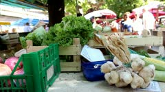 Greenmarket view Stock Footage