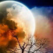 Scenic night landscape Stock Illustration