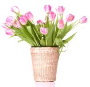Stock Photo of pink tulips bouquet in vase isolated on white background