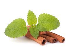 Stock Photo of cinnamon sticks and fresh mint leaf