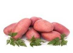 New potato tuber heap and parsley leaves Stock Photos