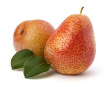 Stock Photo of pear fruits